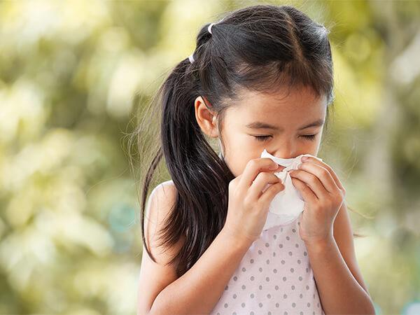 鼻の症状(NOSE)